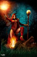 RED RIDING HOOD-WHO'S AFRAID OF THE BIG BAD WOLF? by isikol