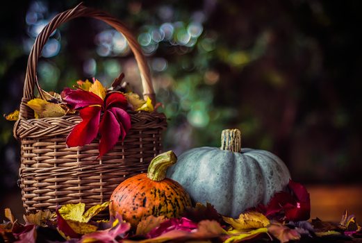A Colorful Autumn by ifsantag