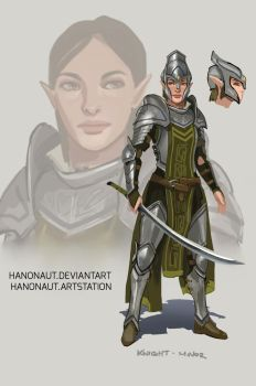 Elven Knight by Hanonaut