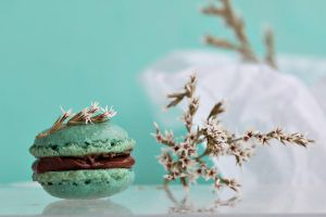 Hazelnut macarons by kupenska