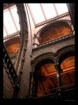 Natural History Museum London by sargas