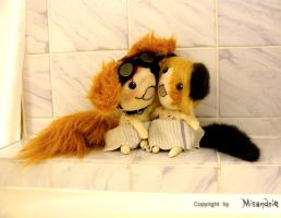 tofee and honey -1- by Misandrie