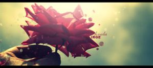 Gift for Irge Signature by eaSe-one