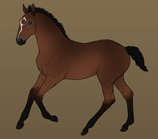 RvS Just Joking Design by RvS-RiverineStables
