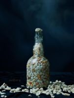 Bottle of Shells by revolver0067
