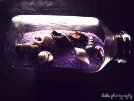 ..day 10 - Time in a bottle.. by bogdanici