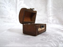Lil Chest 6 by sacral-stock