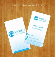 Business Card by flash-infinity