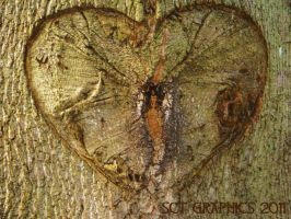 HEART OF THE TREE by SCT-GRAPHICS
