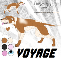 Voyage sold to Pepsi Cola (#969100) by Eminart-FP