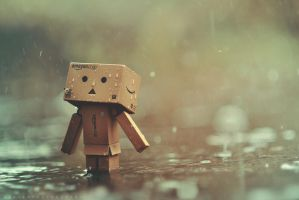 Danbo in the rain by inzanenewbie