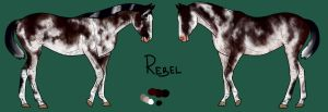 Rebel as a Yearling by Geronimo24