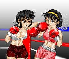 Commish:Fight: Yuka vs Kikyou by pugilismx