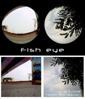 Lomo_fisheye by zin29