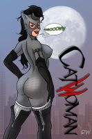 Selina kyle CAT WOMAN by RWedgie