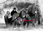 Winter sleigh ride by Yankeestyle94