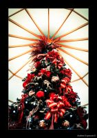 Its The Season by AmbientExposures
