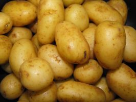 potatoes by newdawnimages