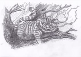 Cheshire Cat - Alice in Wonderland / pencil by Bobo1972
