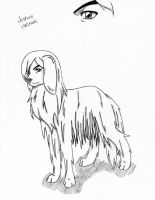 Bleach Dogs: Jushiro by mrsAyasegawa