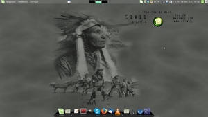 Linux Mint 17 Indian by troikas