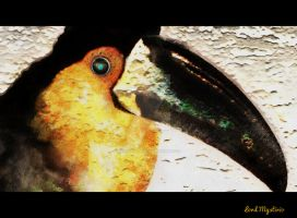 Toucan by LordMystirio