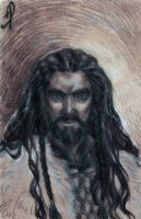 Thorin Oakenshield by IrbisN