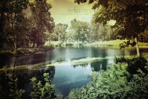 Old Pond by caie143