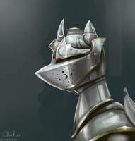 The princess' Royal Armor by duh-veed