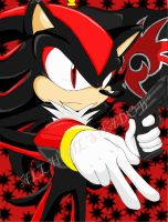 All Hail Shadow :Collab Entry: by Animegirl300