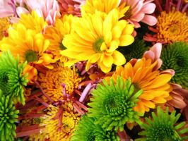 Safeway Flowers by Danerboots