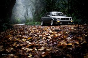 e30 fall REEDIT by patrickSnapp