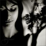 she's a forest by prismes