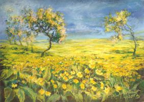 Spring orchard by GrazynaKulpinska