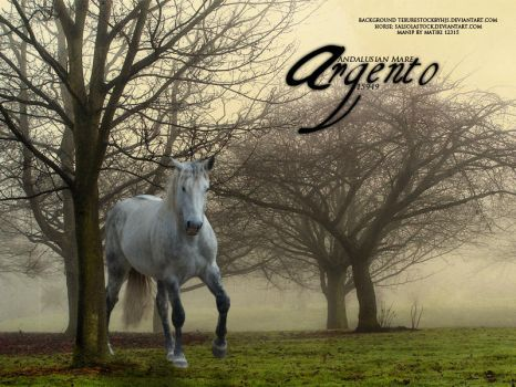 grey andalusian by thatjarviskid