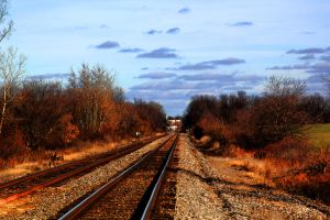 Tracks by Adeimantus