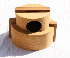 box with lid 2 by DavidHansson