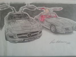 Mercedes SLS and Gullwing by perobekavac