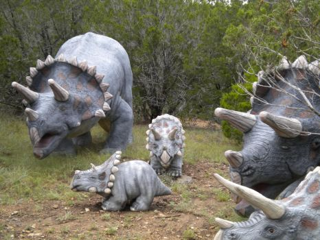 Triceratops family by DinoLover09