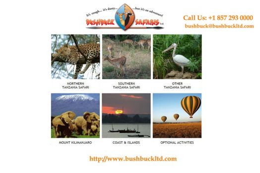 Spend your holidays in Tanzania by Bushbucksafaris