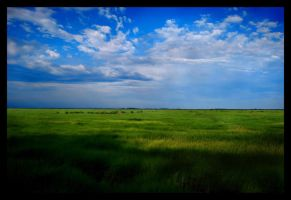 Wide Open Spaces by AvrilDC