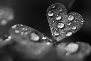 love, rain II by simplysarah123