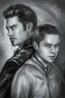 Teen Wolf - Sterek by Eneada