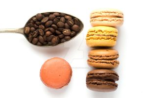 Love French Macarons! by anamatusevic