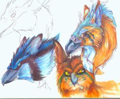 3 gyphons by atrafeathers