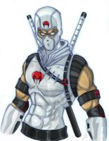 stormshadow colored by 80Gunz