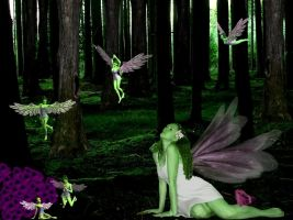 Where Faeries Dance by LadyWinter