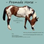 Premade Cut-Out Horse by luckydesigns