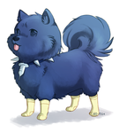 Small dog in hideous socks by 60-Six