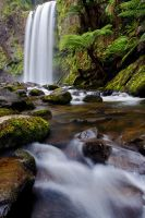 Hopetoun Falls - The Otways by fusionx